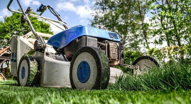 דשא סינטטי מידות